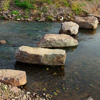 Lebensraum Wasser